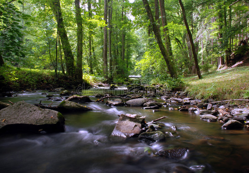 Download Mountain creek stock photo. Image of cool, outdoors, peaceful - 3048794