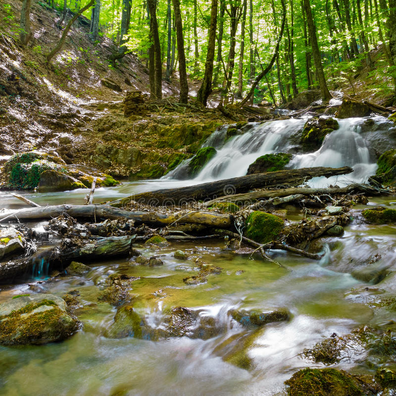Download Mountain creek stock photo. Image of flowing, motion - 36777544