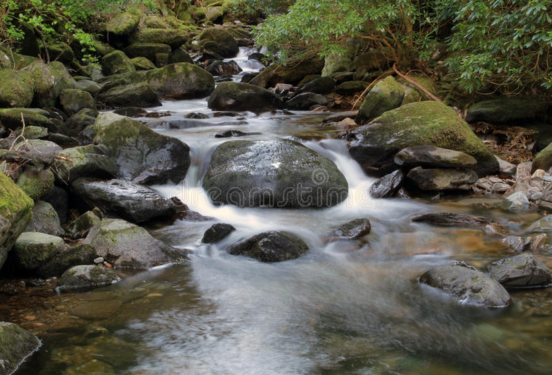 Mountain creek - Ireland stock images
