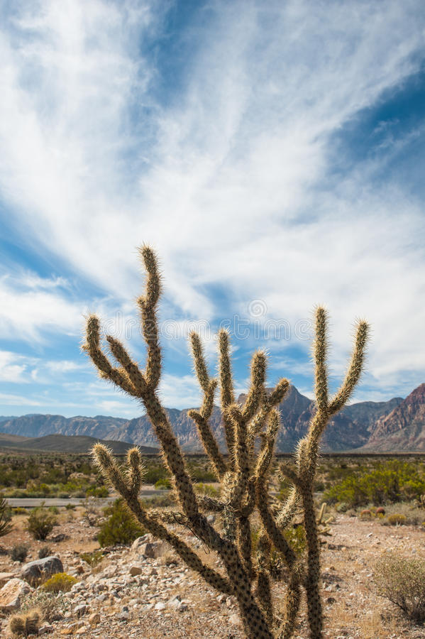 Mountain Desert royalty free stock image