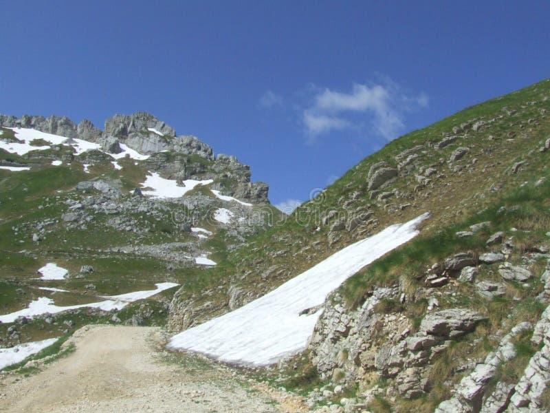 Mountain Durmitor. In Montenegro royalty free stock photography