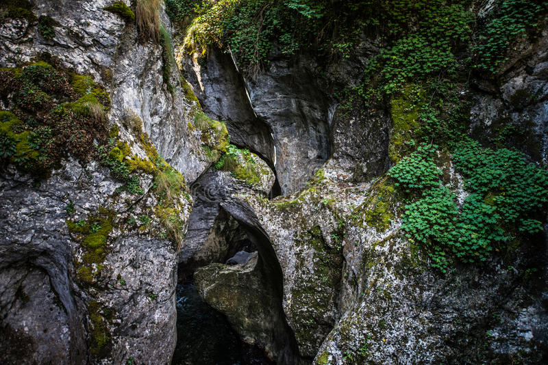 Mountain Entrances. Mountain river entrance to the Devil`s Throat Cave in Bulgaria, rock formations entwined with each other forming small bridges. Small trees stock image