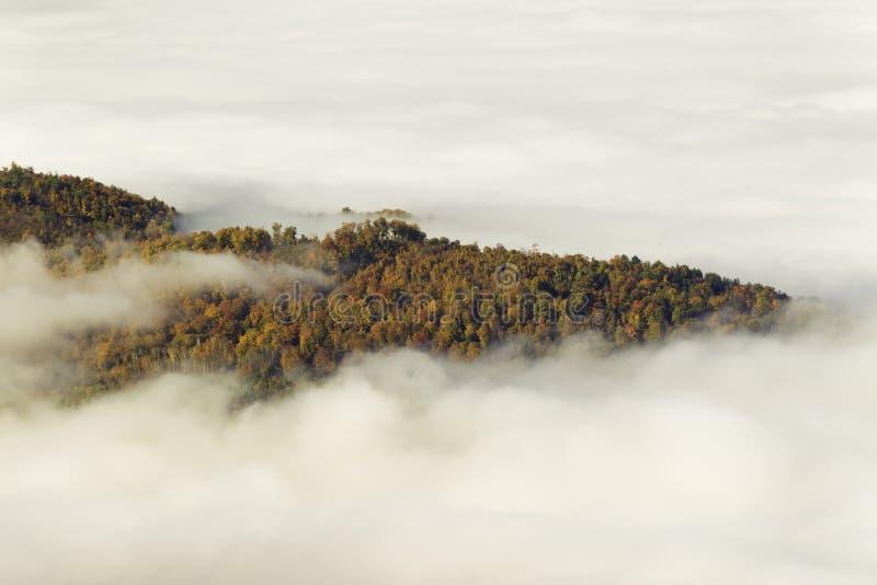 Download Mountain Fall Foliage stock image. Image of autumn, morning - 34197263