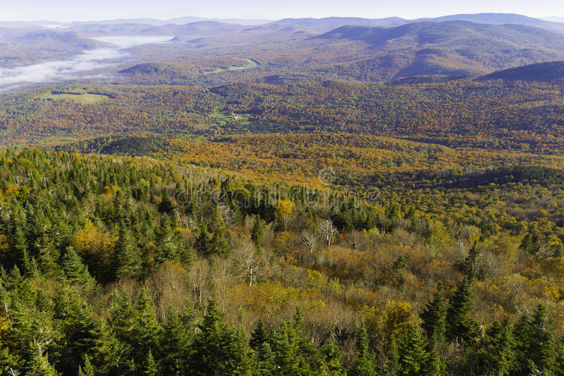 Download Mountain Fall Foliage stock image. Image of autumn, tree - 34196983