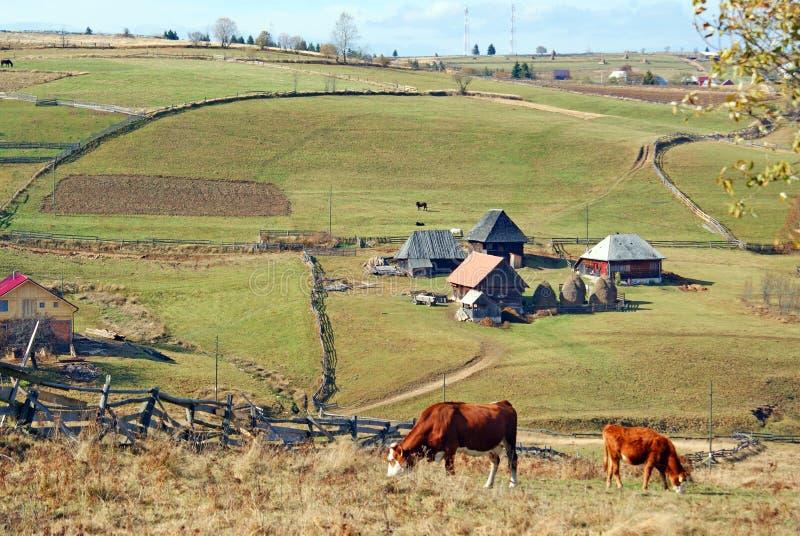 Mountain farm stock image