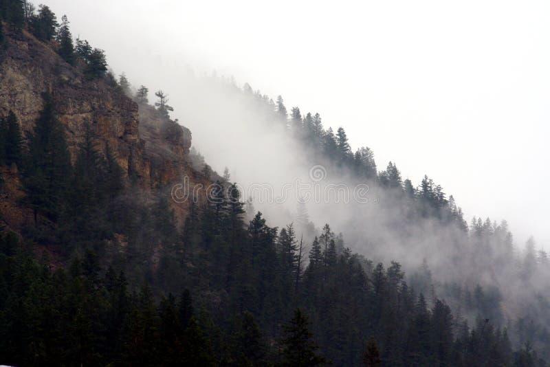 Mountain Fog royalty free stock photo