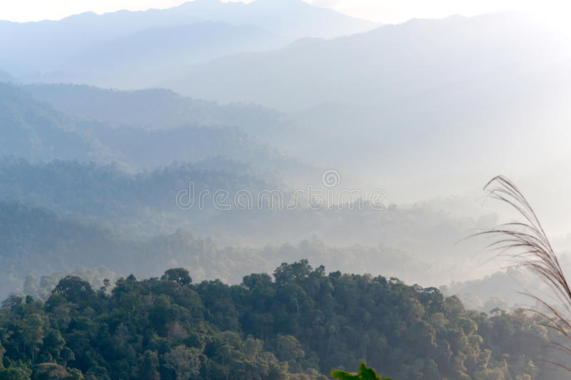 Mountain and fog in tropical 02 stock photos