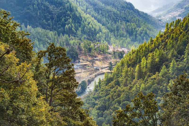 Mountain forest in Bhutan, the Himalayas in the spring, on the way to the mountain monastery near Thimphu. View of Thimp[hy valley. Mountain forest in Bhutan stock photography