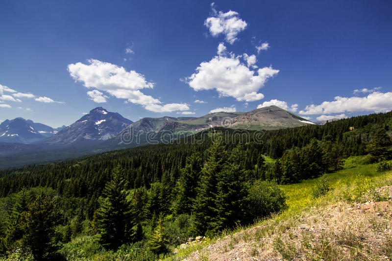 Mountain forest stock image. Image of snow, altitude ...