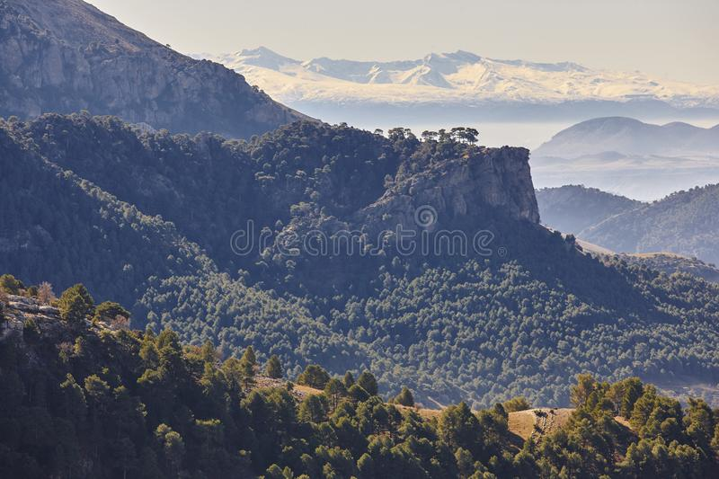 Mountain and forest landscape in Sierra de Cazorla, Jaen. Spain royalty free stock images