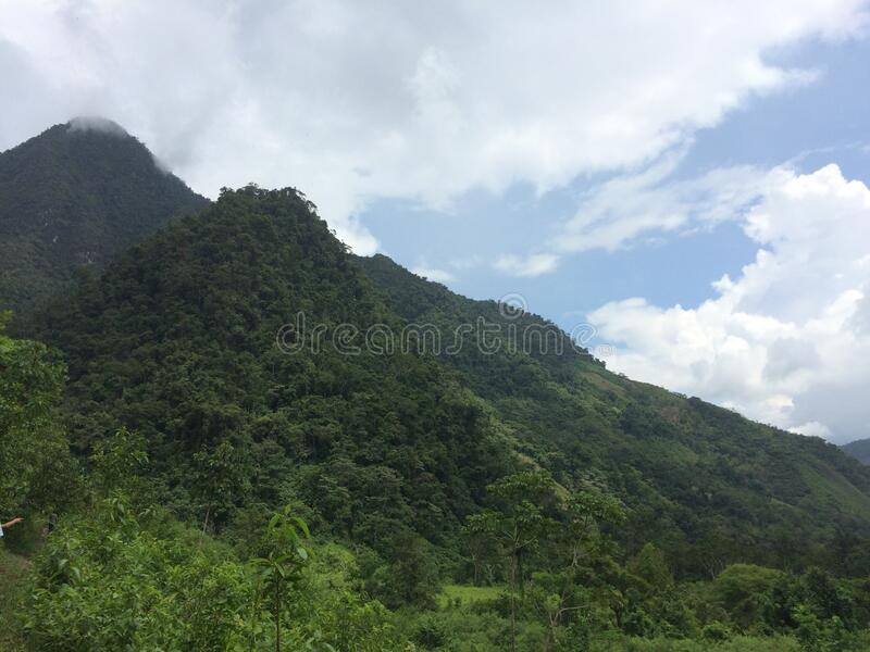 Mountain forest landscape under afternoon sky with clouds in sunlight. stock photography
