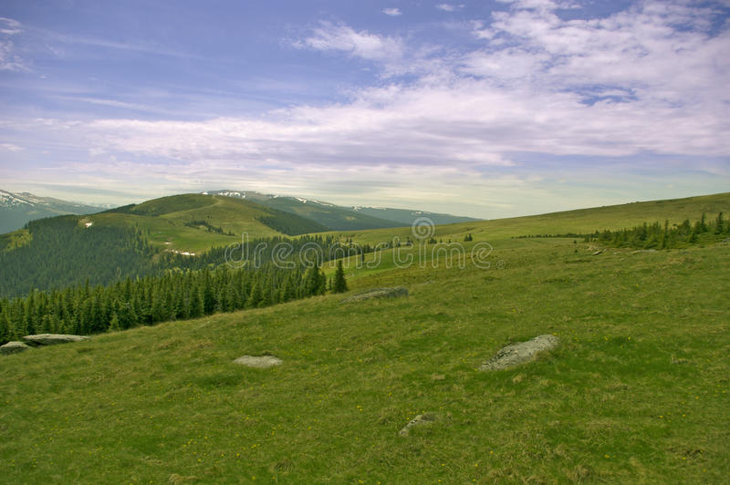 Download Mountain Forest Meadow And Peaks Stock Photo - Image: 13901486