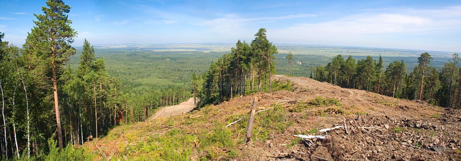 Download Mountain Forested Stock Photography - Image: 18777052