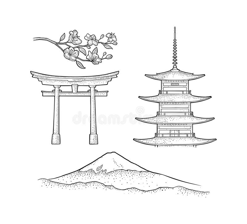 Mountain Fuji in Japan. Vintage black vector engraving illustration. Mountain Fuji in Japan, pagoda, torii, cherry sakura branch with flowers and blossom vector illustration