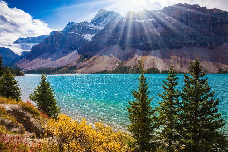 The mountain glacial Bow Lake with green water royalty free stock photos