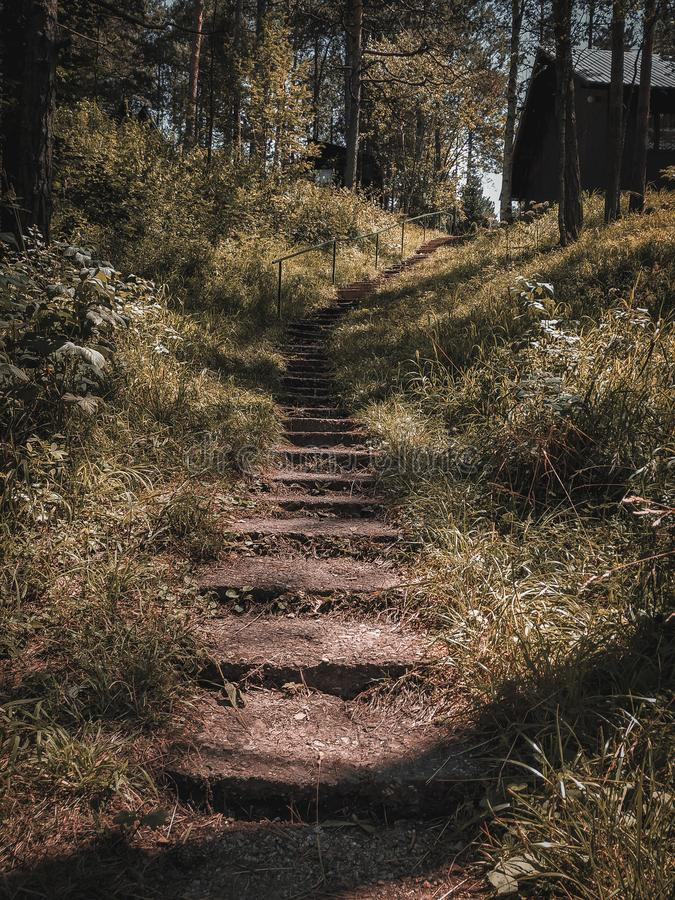 Mountain grass stairs to the top stock photos