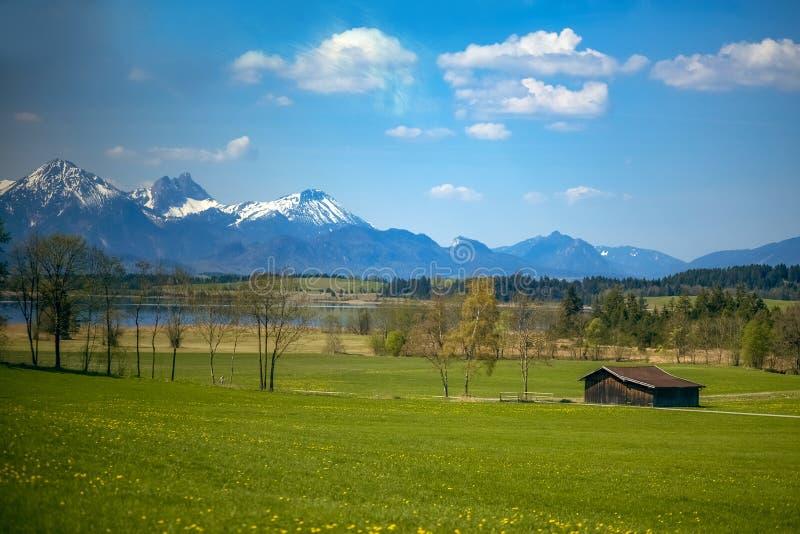 Mountain green valley landscape. Beautiful mountain green valley panorama. Mountain meadow flowers valley view. Mountain valley. Meadow flowers view stock photos