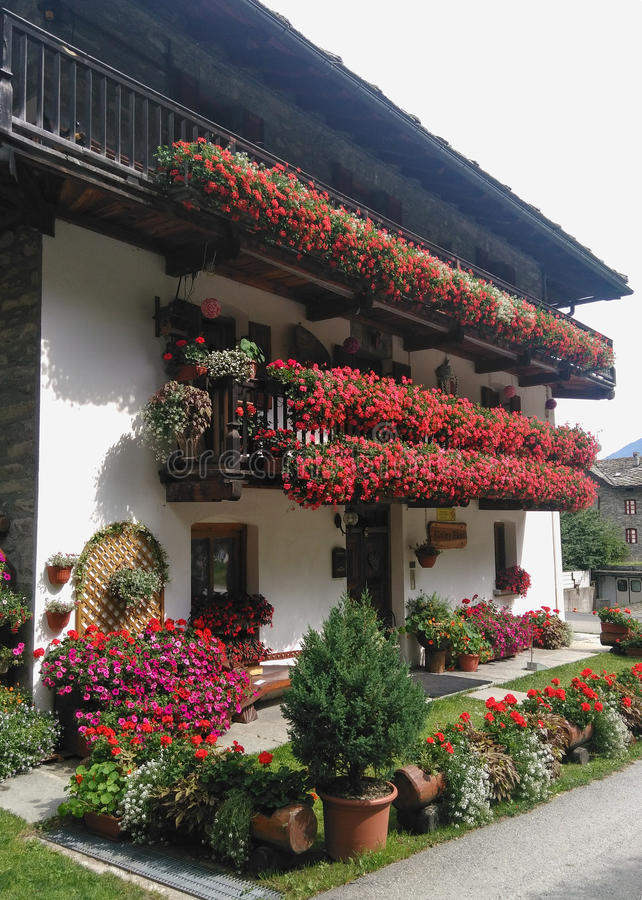 Download Mountain house stock image. Image of geraniums, gressoney - 83708123