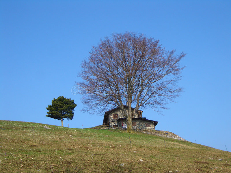 Mountain house and tree royalty free stock photo