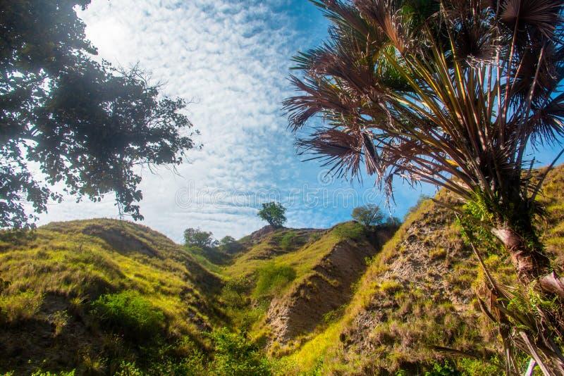 Mountain Kawatuna Landscape i Kawatuna, Palu, Central Sulawesi, Indonesien royaltyfria bilder
