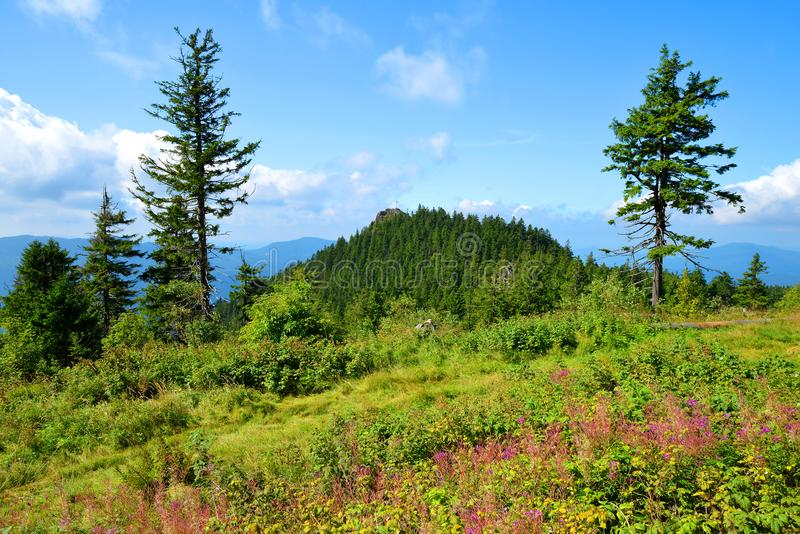 Mountain Klein Osser in National park Bavarian forest, Germany. royalty free stock image