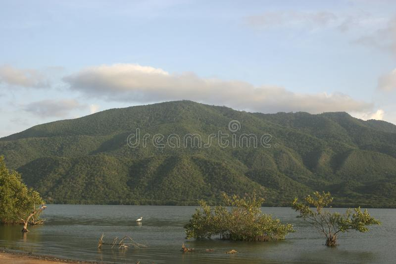 Mountain Laguna de Unare wetland Venezuela. A view of the mountains in the Laguna de Unare Ramsar site Venezuela stock image