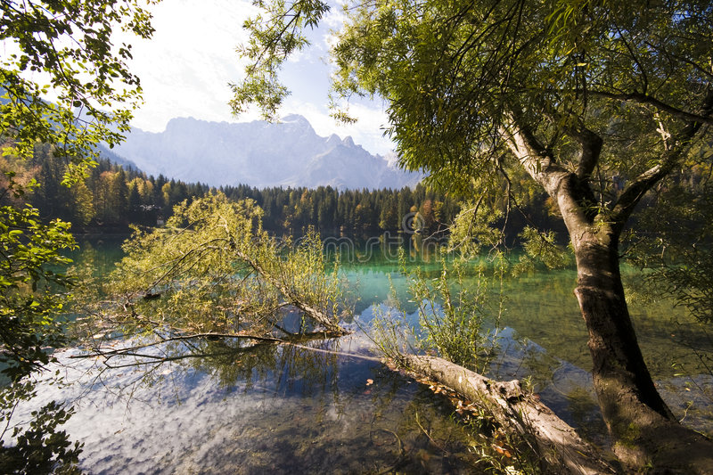 Mountain Lake. With trees and mountain reflection from lower lake in Fusine - Tarvisio, Italy 2007 royalty free stock photo