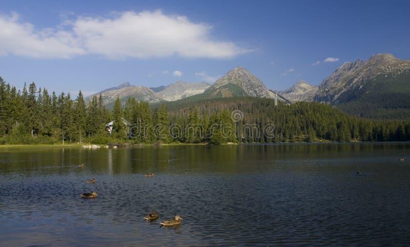 Mountain lake. In National Park High Tatra, Slovakia royalty free stock photo