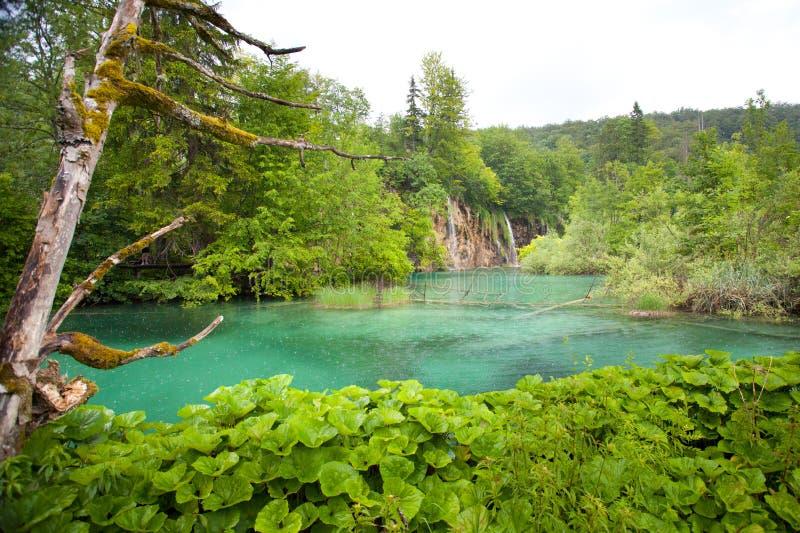 Mountain Lake immagini stock