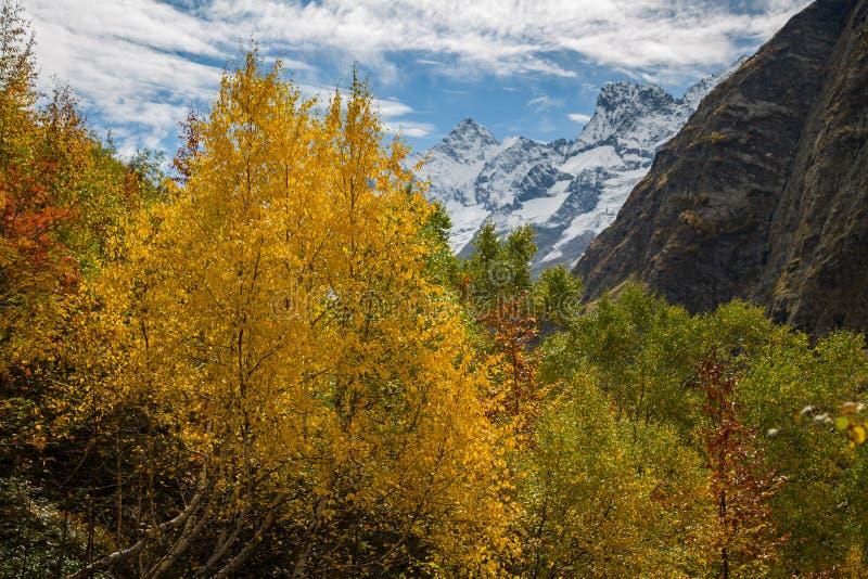 Autumn mountain valley landscape. Mountain lake in autumn. Autumn mountain lake panorama. royalty free stock photography