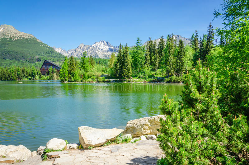 Mountain lake on background of green trees and sky royalty free stock photography