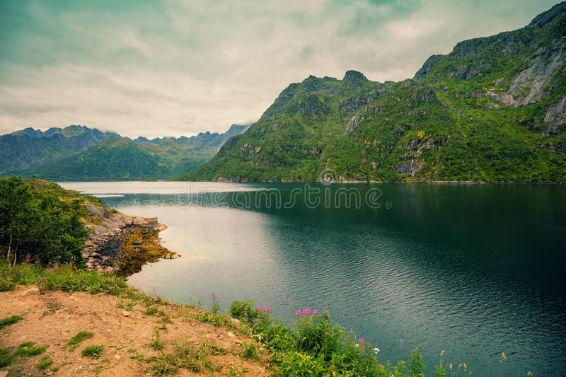 Mountain Lake. Beautiful nature in Norway royalty free stock photography