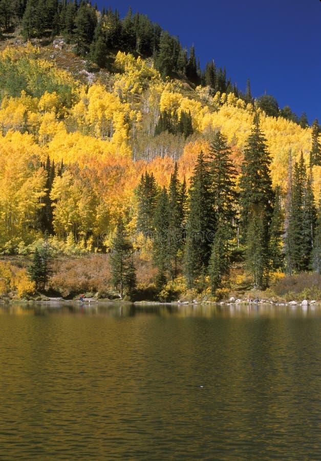 Mountain lake in fall stock photography