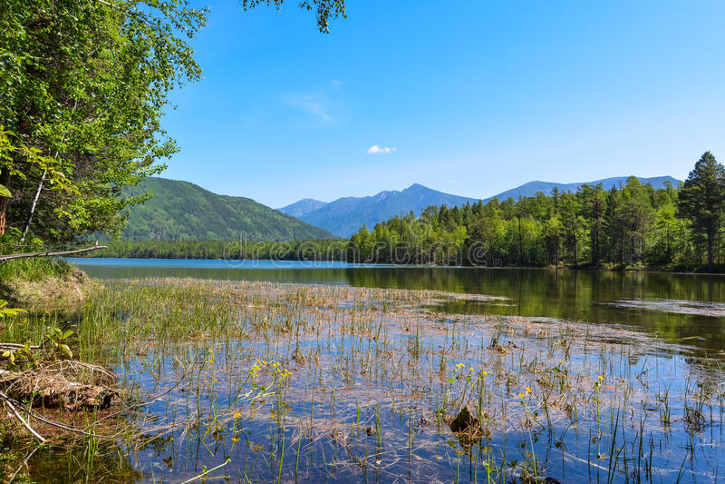 Mountain on Lake Frolikha stock images