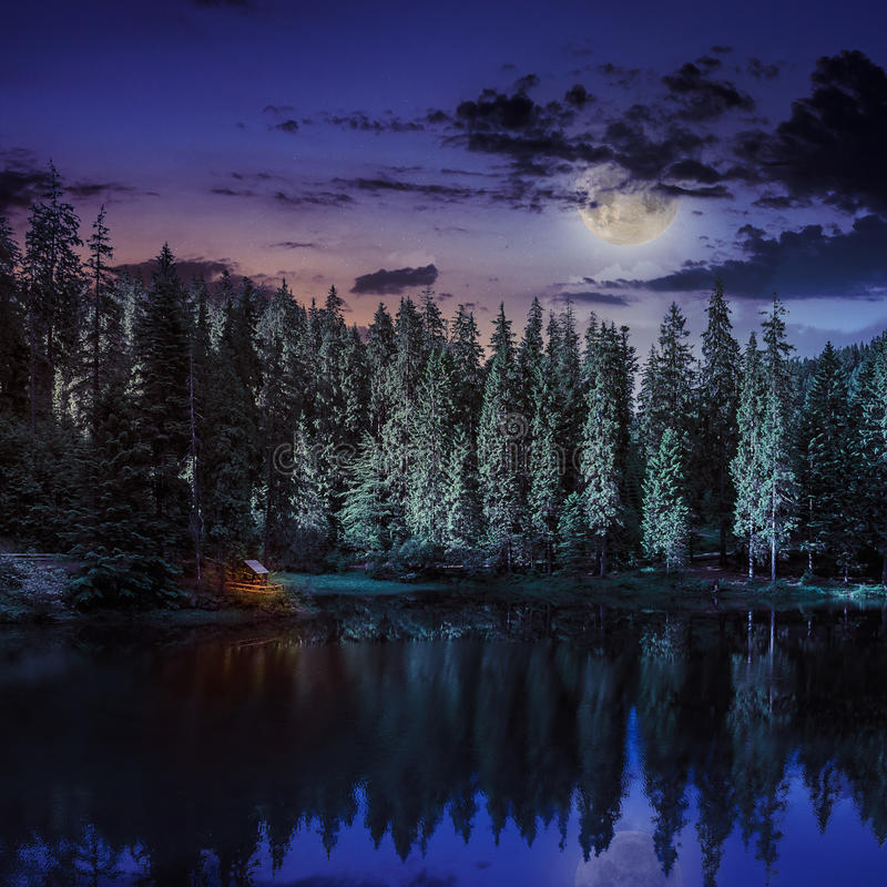 Free Mountain Lake In Coniferous Forest At Night Stock Photo - 36181130