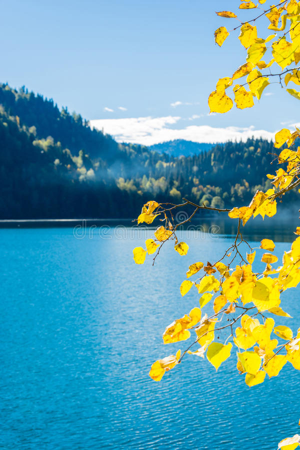 Free Mountain Lake Ritsa. Stock Photography - 73703582