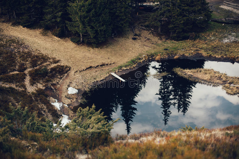 Mountain lake in spruce forest on a background of blue sky royalty free stock photography