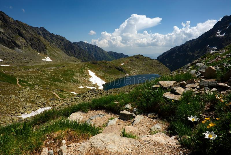 Mountain lake, walking path and flowers royalty free stock images