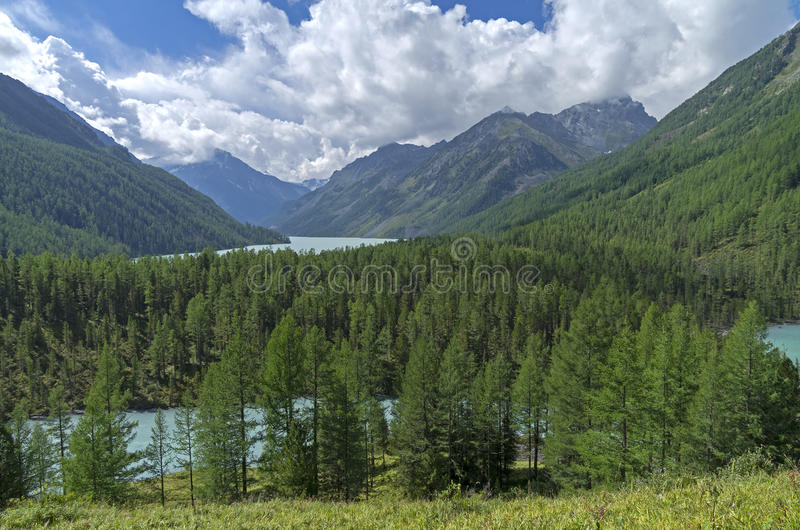 Mountain lakes. Altai Mountains, Russia. Sunny summer day. Mountain lakes in the valley of the river Kucherla. Altai Mountains, Russia. Sunny summer day royalty free stock photos