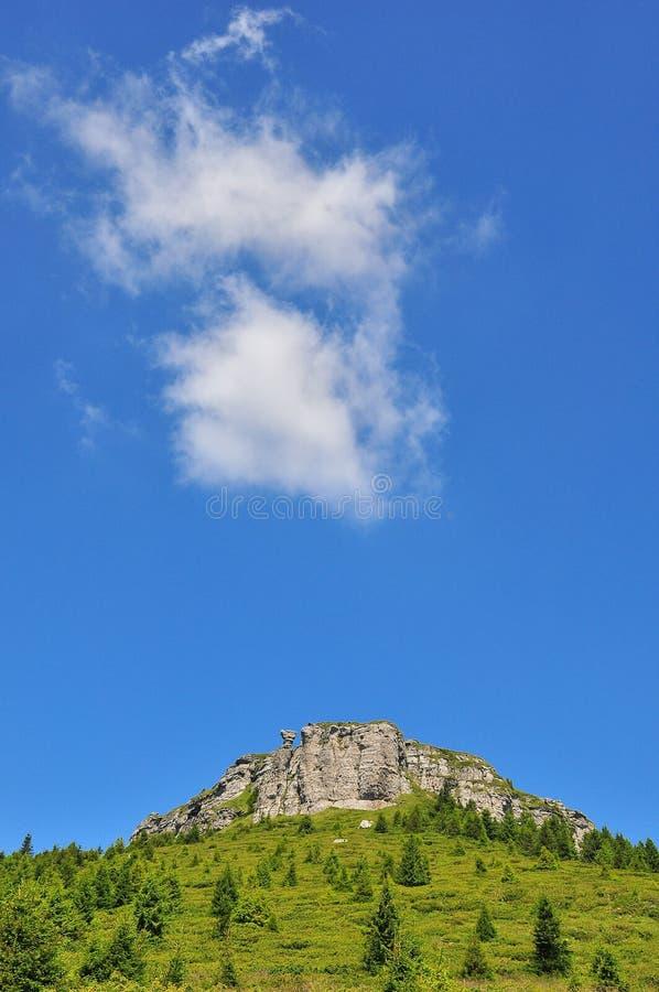 Download Mountain Landscape stock photo. Image of boulder, carpathian - 10584986