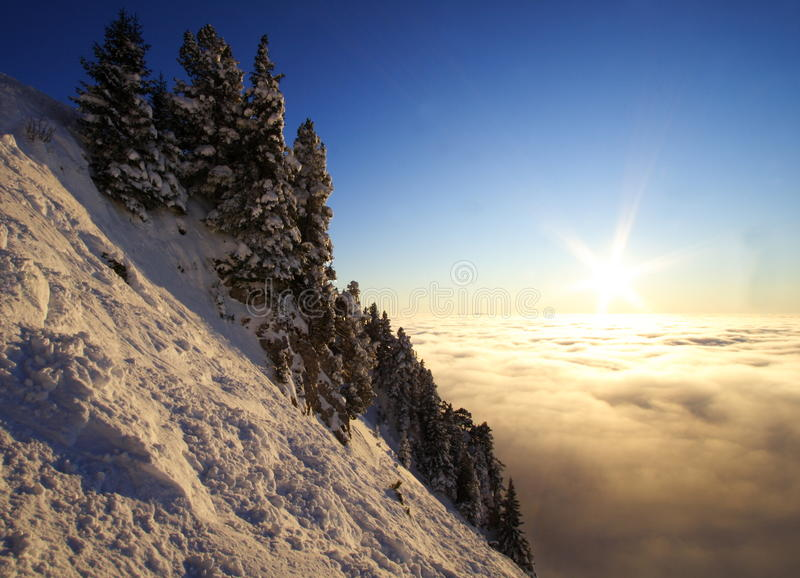 Mountain landscape above a sea of clouds at sunset. View above a sea of clouds in the alps in winter at sunset : pine trees, rocks and snow. Chamechaude summit royalty free stock photography