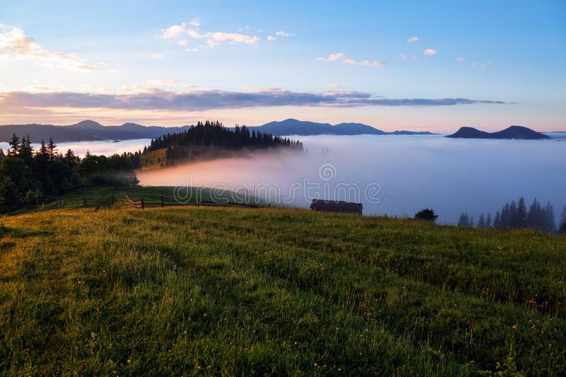 Mountain landscape. Beautiful sunset. Dense fog with nice soft light. On the lawn the grass and flowers in dew. Wooden fence. stock photo