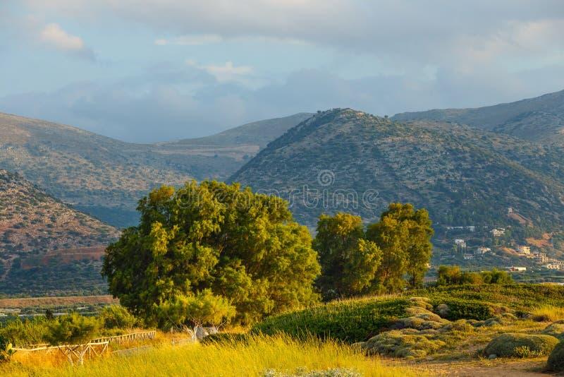 Mountain landscape of Crete near Malia, Greece royalty free stock photography