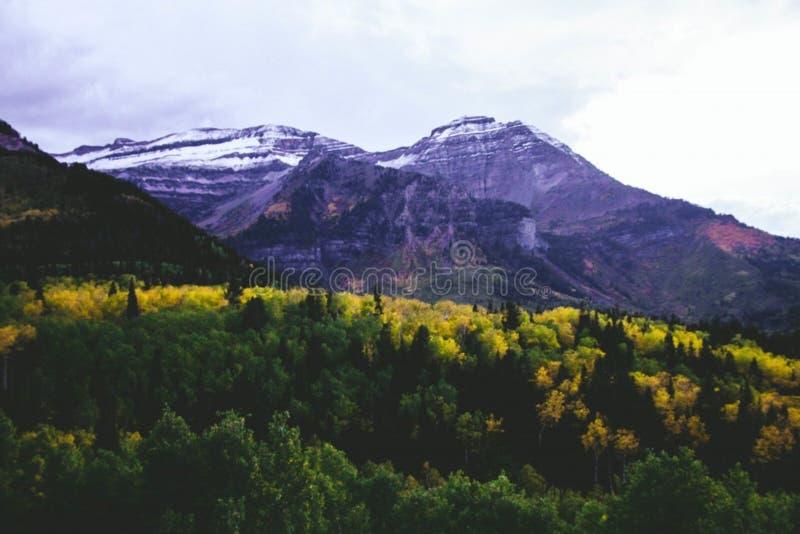 Mountain Landscape Free Public Domain Cc0 Image