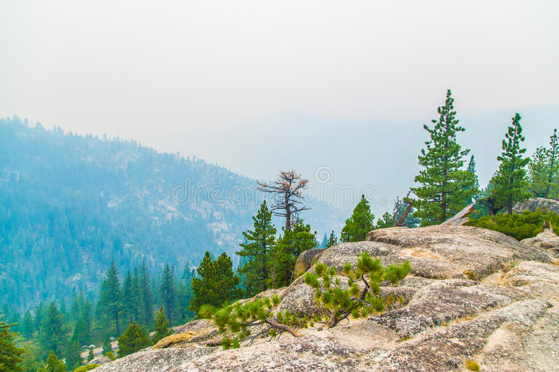 Download Mountain landscape stock photo. Image of trees, mountain - 33956890
