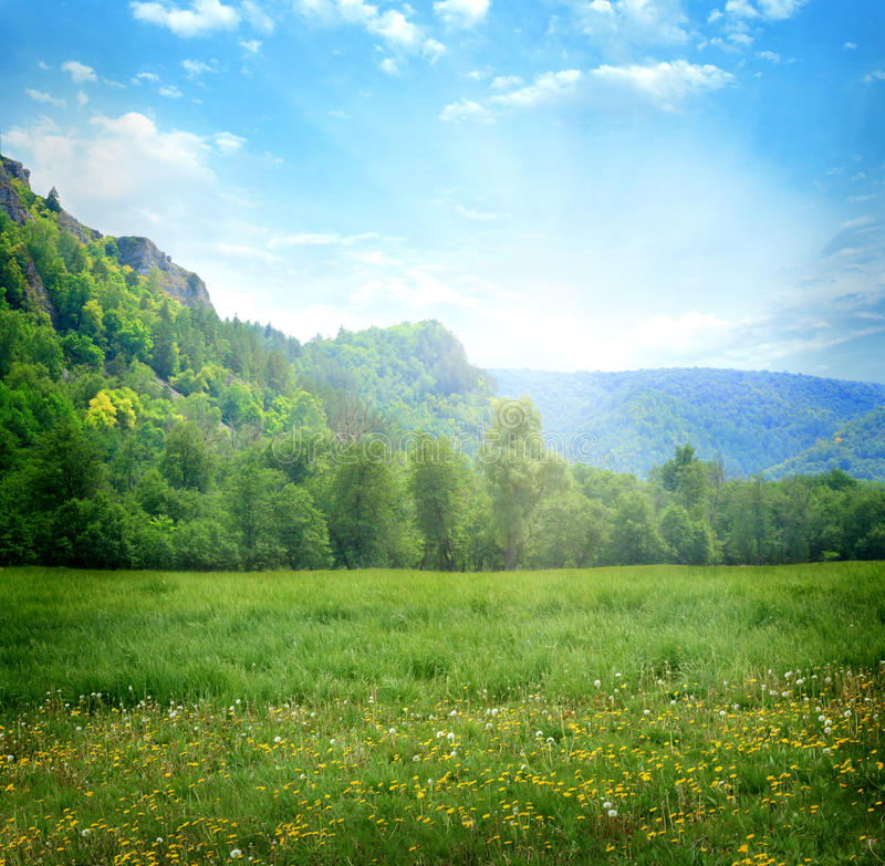 Download Mountain Landscape With Flowers Stock Image - Image: 27697821