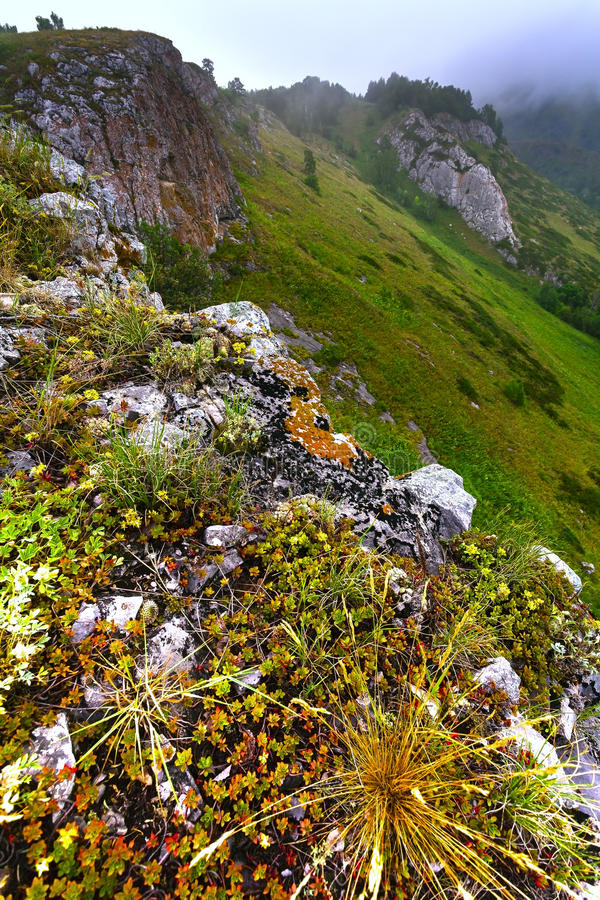 Mountain landscape with green peaks rain and gloomy skies. Russia, Bashkiria. Mountain landscape , mountains with green vegetation stock images