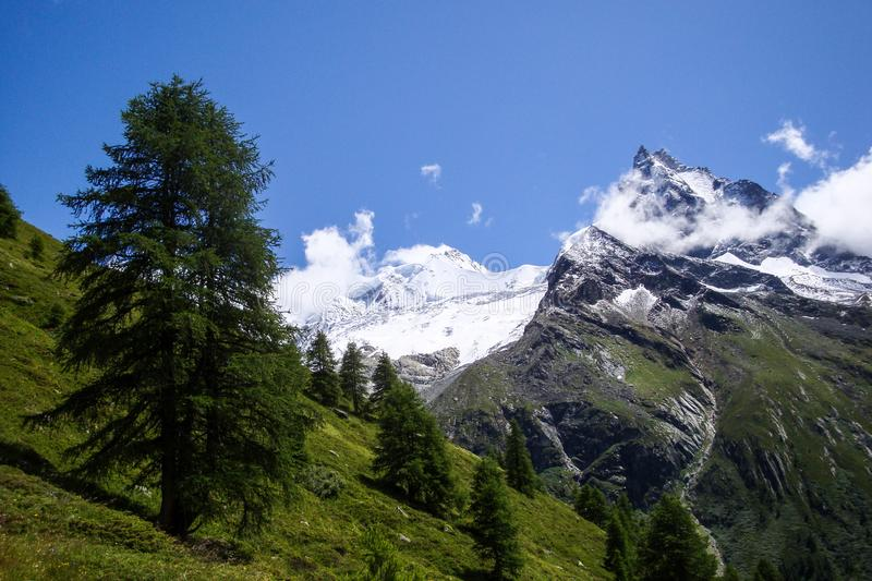 Mountain landscape with high peaks and green grassy meadows and trees in the Zinal Valley of Switzerland. A mountain landscape with high peaks and green grassy royalty free stock images