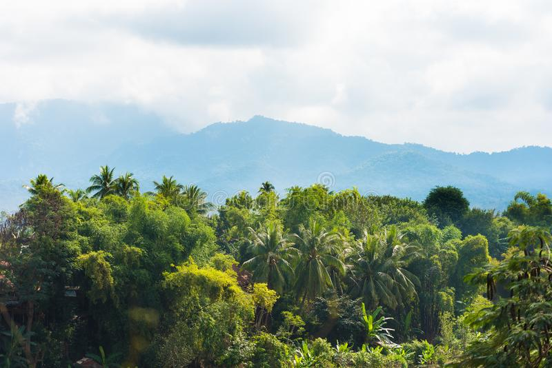 Mountain landscape in Luang Prabang, Laos. Copy space for text. Mountain landscape in Luang Prabang, Laos. Copy space for text stock photos