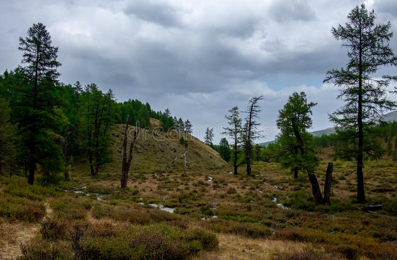 Mountain landscape. In cloudy weather in the Altai Republic stock photos